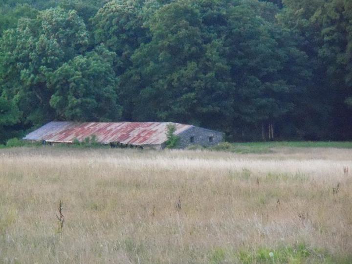 130405_old_barn