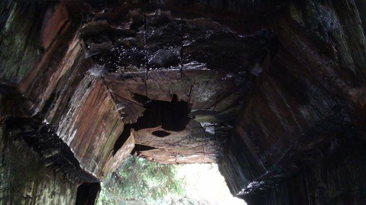 130519_cave_entrance
