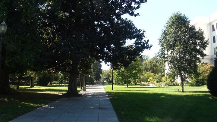 130605_park_path