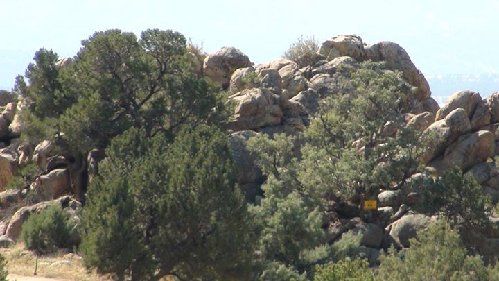 131004_boulders_and_trees