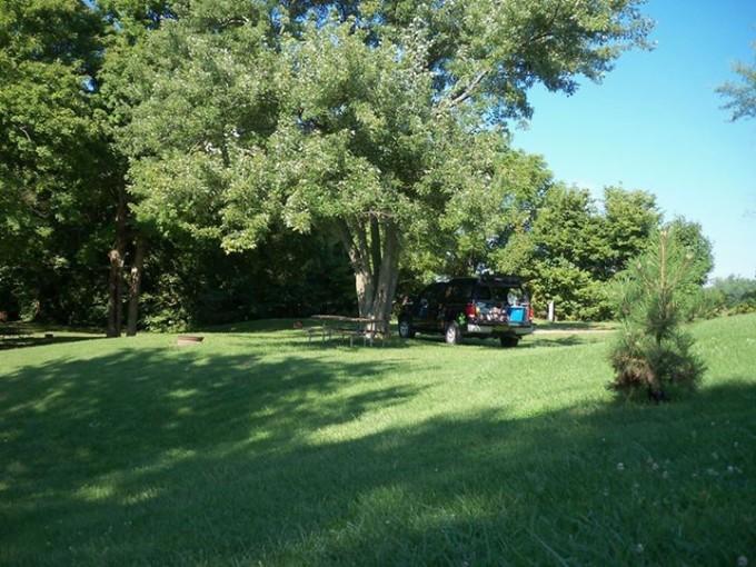 150421_truck_under_tree